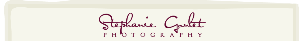 Raleigh Durham Newborn and Child Photographer | Stephanie Goulet Photography logo